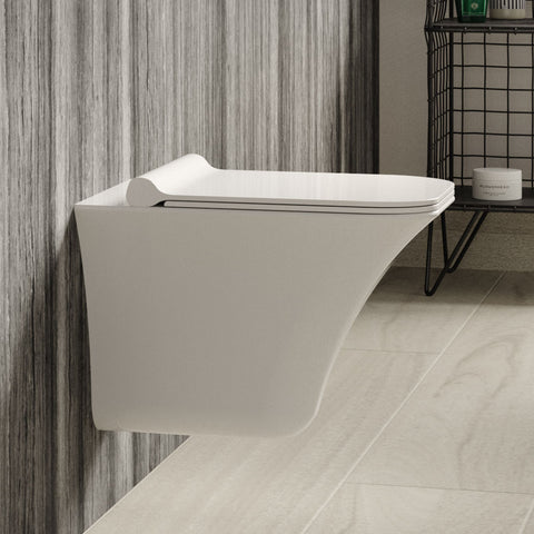 Hudson Reed Grace Rimless Wall Hung Pan & Soft Close Seat - NCT140