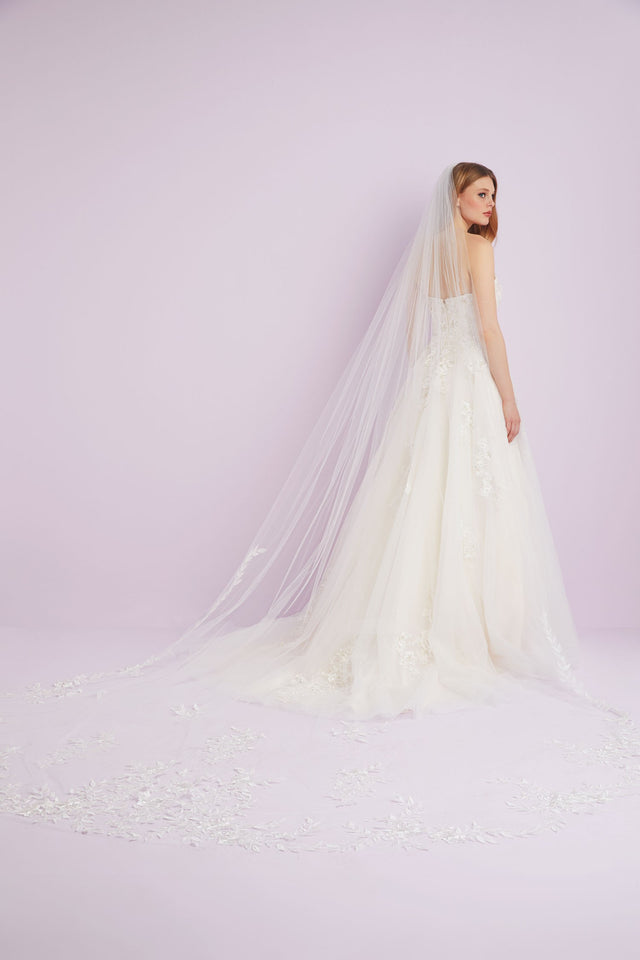 Cathedral length veil with lace detail