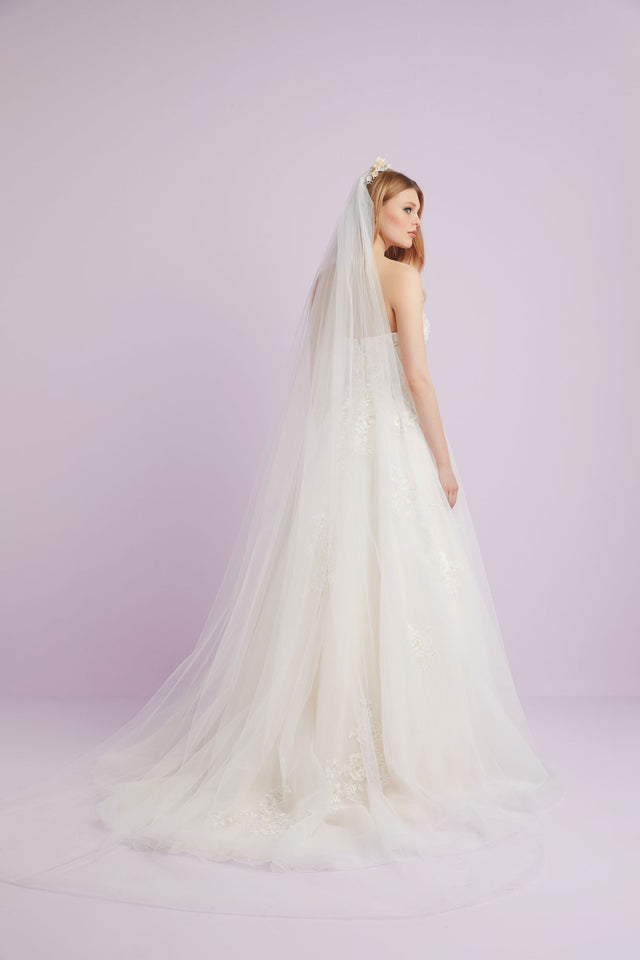 Plain cathedral length veil