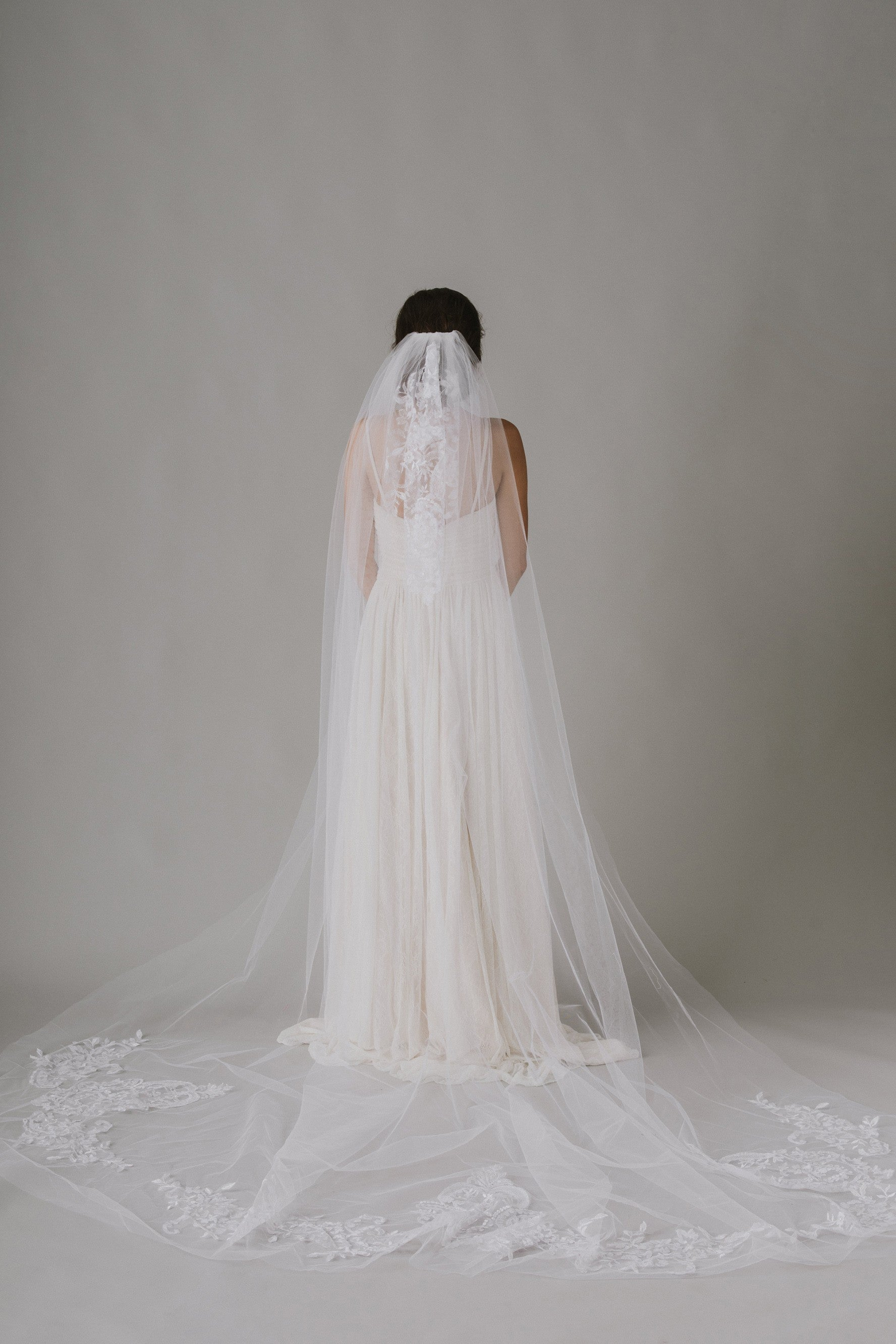 Embroidered Cathedral Length Veil-WPD14215