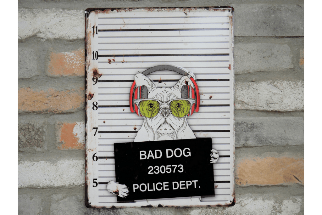 "Are you a Dog Lover???Then this funny dog Sign is a must have. Funny mug shot image of a bad dog holding a booking sign ""Bad Dog 230573""/Giftworks, Ennis&Galway"