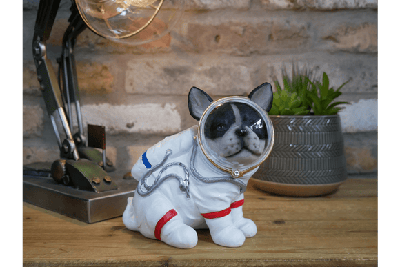 Astronaut Space Dog Quirky Astronaut space dog ideal for Space enthusiasts and dog Lovers/Giftworks, Ennis&Galway