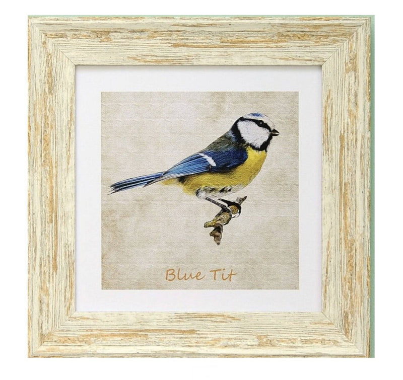 Irish Gifts Gold Finch 9x9 Framed print - Giftworks