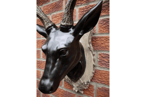 Stag Head Add a touch of Country Charm to your home and make an awesome statement wall with this wall mounted Stag Head/Giftworks, Ennis&Galway