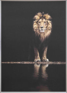 Framed Taira Lion Picture