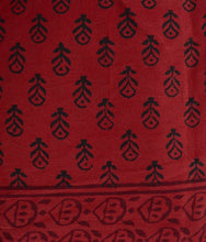 Load image into Gallery viewer, HAND BLOCK BAGH PRINT COTTON RED SAREE