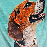 Custom Pet Photo Drawing Cartoon Blanket, Draw Head/Body - The Pet Pillow