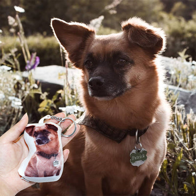 Custom Pet Photo Small Pillow Keychain - The Pet Pillow