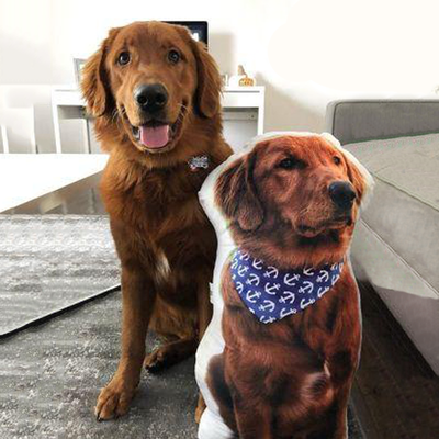 Make Your Pet Picture into a Custom Pet Shaped Pillow that Look Like your Pet - The Pet Pillow