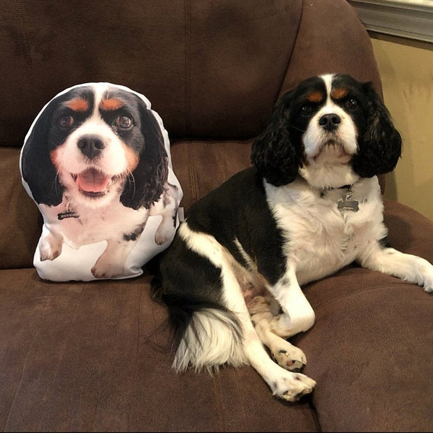 Custom Pet Shaped Pillow for Pet Owners, Christmas & Traveling Gift - The Pet Pillow