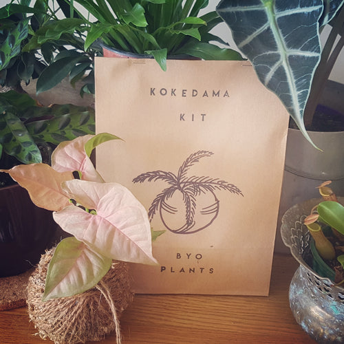 rock.leaf.moss Kokedama DIY Kit