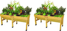 Load image into Gallery viewer, VegTrug 1.8 Meter Raised Bed (2-(Pack))