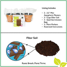 "Load image into Gallery viewer, Self Watering Mini 3.5"" Planter Pots (3 Pack PURPLE) Grow a Indoor Window Sill Garden. Perfect for Potting Smaller House Plants, Herbs, African Violets, Succulents, Flowers or Start Seedlings."