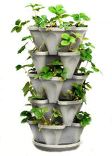 Load image into Gallery viewer, 5 Tier Stackable Strawberry, Herb, Flower, and Vegetable Planter - Vertical Garden Indoor/Outdoor