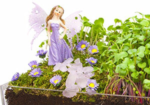 Window Garden Edible Fairy Garden Kit with an Enchanting Fairytale and Accessories