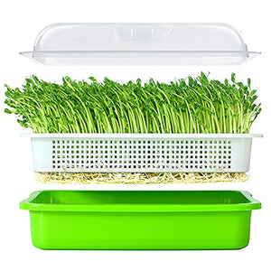 Seed Sprouter Tray BPA Free PP Soil-Free Big Capacity Healthy Wheatgrass Grower with Lid Sprouting Kit 13.4x9.84x4.72in(LxWxH)