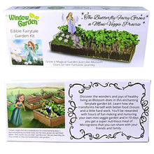 Load image into Gallery viewer, Window Garden Edible Fairy Garden Kit with an Enchanting Fairytale and Accessories
