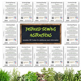 Non-GMO Culinary Herb Seed Collection, 12 Individual Seed Packets Incl. 4,000+ Seeds Collectively (Sage, Basil, Chives, Cilantro, Rosemary, Dill, Marjoram, Oregano & More!) Seeds by Seed Needs