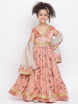 Lehenga Choli Set for girl