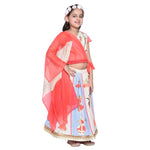 Norell Lehenga Choli set for Girls