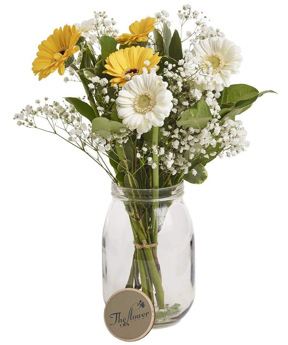 Gerbera and Gyp Classic Fresh Flower Bunch - The Gift Project