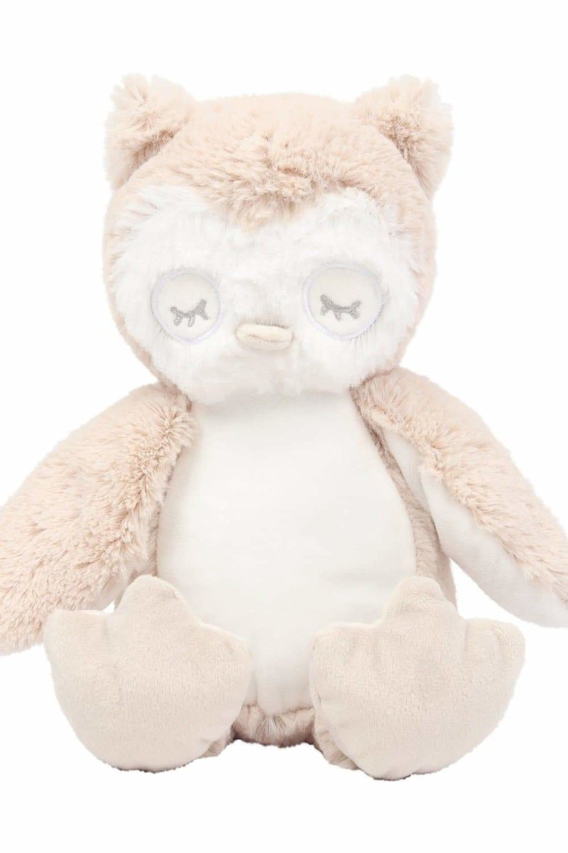 Owl Teddy With Personalised Removable T-Shirt - The Gift Project