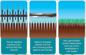 Slitseeding for Small Lawns
