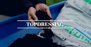 Topdressing for Small Lawns