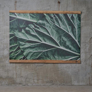 Canvas art Rhubarb leaves in wooden frame, photo by Anna Maskava - HONEY FURNITURE