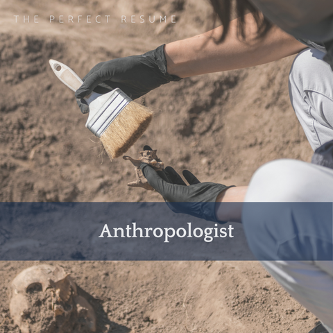 The Perfect Anthropologist Resume Writing Tips