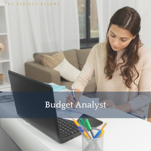 The Perfect Budget Analyst Resume Writing Tips