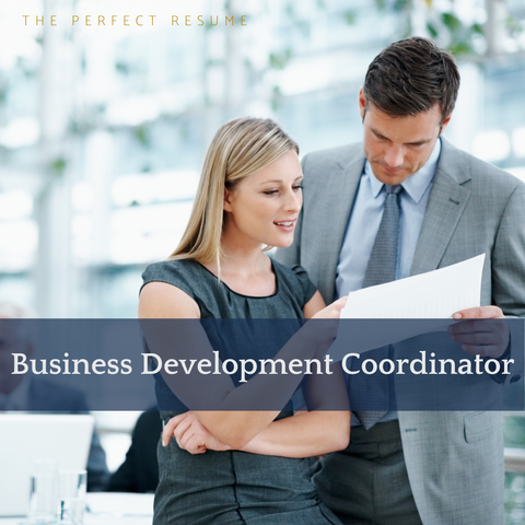 The Perfect Business Development Coordinator Resume Writing Tips