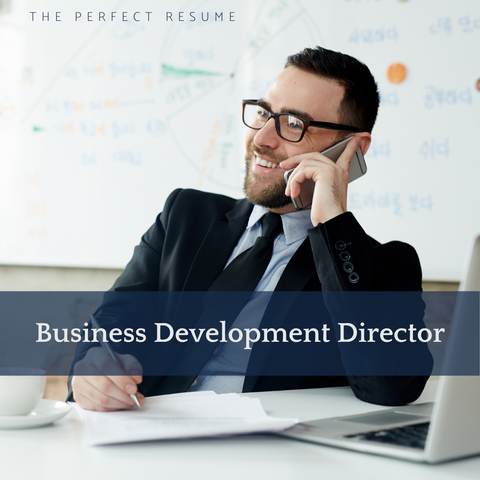 The Perfect Business Development Director Resume Writing Tips