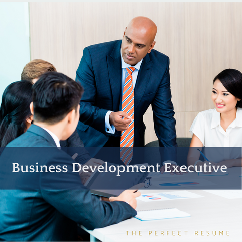 The Perfect Business Development Executive Resume Writing Tips
