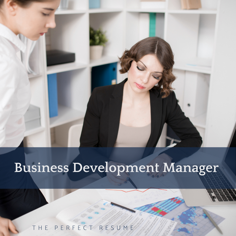 The Perfect Business Development Manager Resume Writing Tips