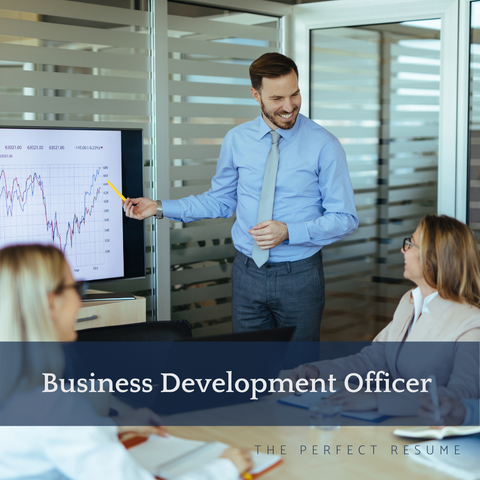 The Perfect Business Development Officer Resume Writing Tips