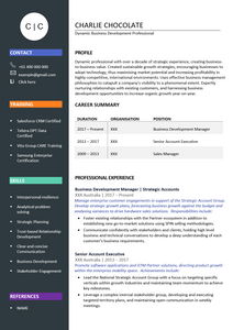 The Perfect Resume | Resume Template
