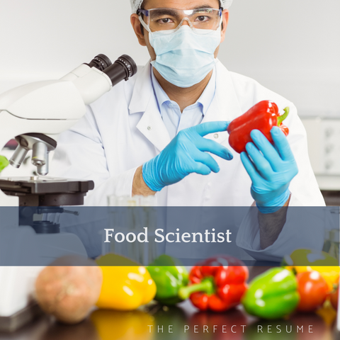 The Perfect Food Scientist Resume Writing Tips