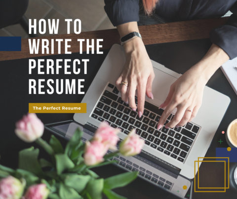 How to write the perfect resume