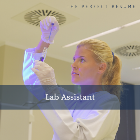 The Perfect Lab Assistant Resume Writing Tips