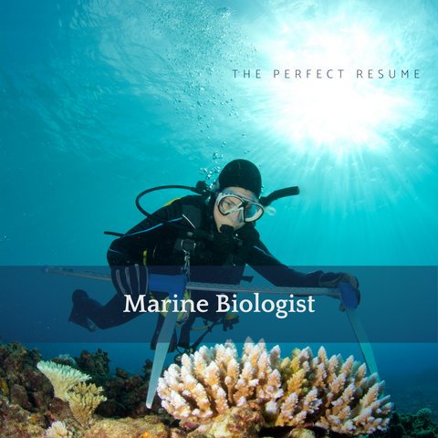 The Perfect Marine Biologist Resume Writing Tips
