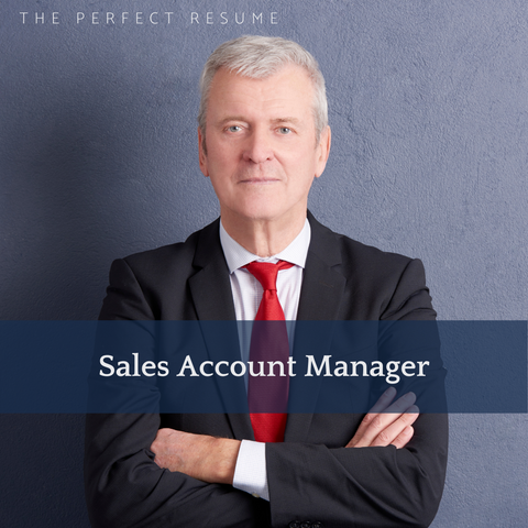 The Perfect Sales Account Manager Resume Writing Tips
