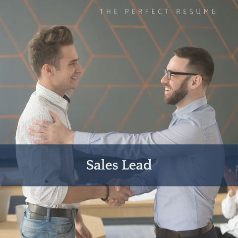 The Perfect Sales Lead Resume Writing Tips