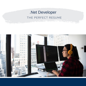 .Net Developer Resume Writing Services