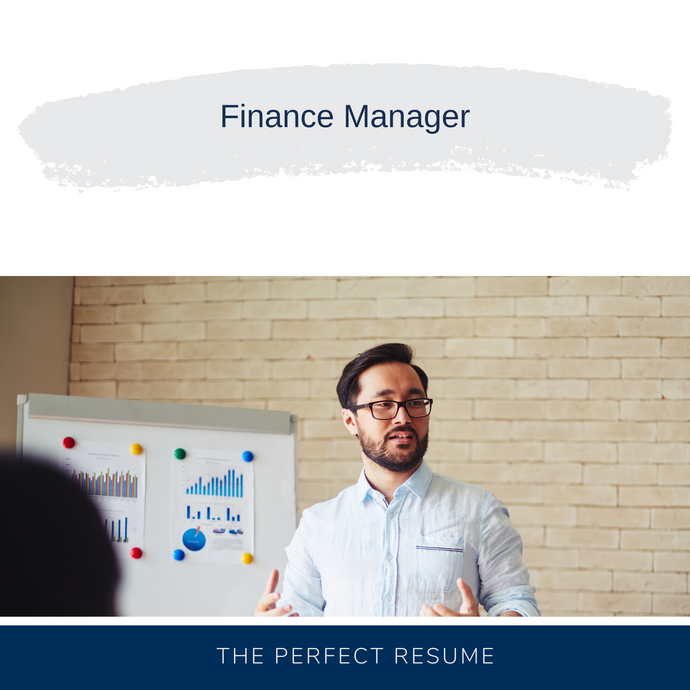Finance Manager Partner Resume Writing Services