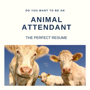 Animal Attendant Resume Writing Services