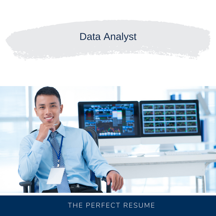 Data Analyst Resume Writing Services