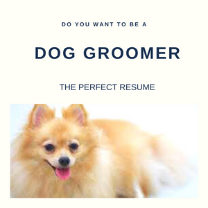 Dog Groomer Resume Writing Services