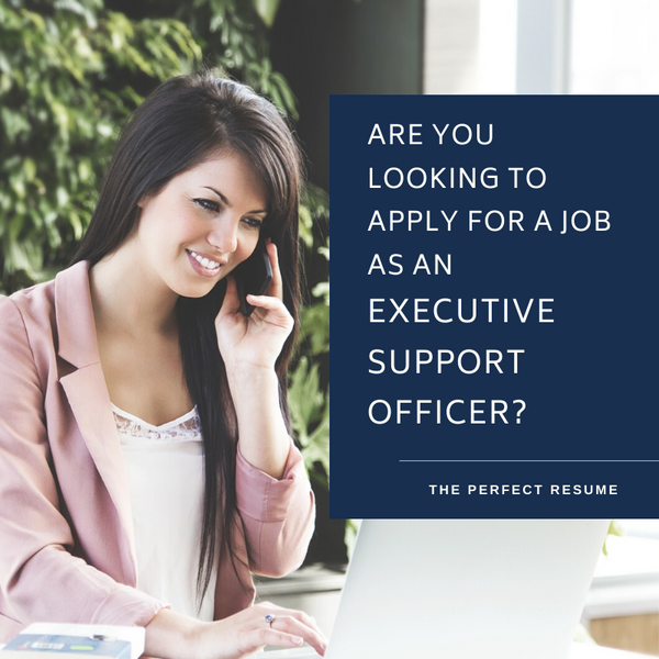 Executive Support Officer Resume Writing Services