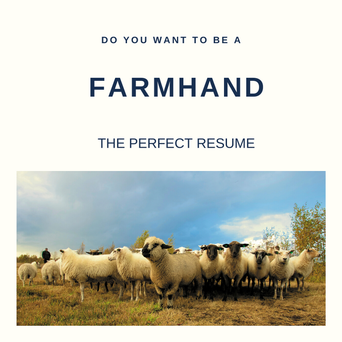 Farmhand Resume Writing Services